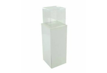 Acrylic Pedestal Display Unit Clear (Pedestals) in Orlando