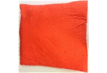 Pillow Bright Orange (Pillows) in Orlando